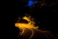 Centerline road at night. Virgin Islands National Park, US Virgin Islands.