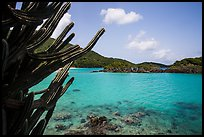 Cactus and Trunk Cay, Trunk Bay. Virgin Islands National Park ( color)