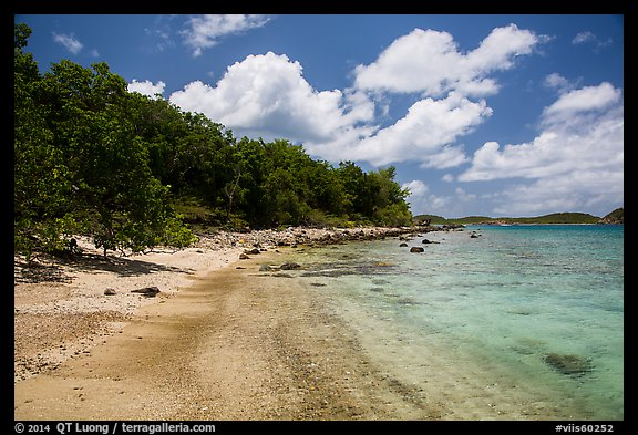 Shoreline and reef, Hassel Island. Virgin Islands National Park (color)