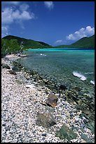 Shore and Turquoise waters, Leinster Bay. Virgin Islands National Park, US Virgin Islands.