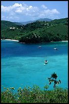 Tropical anchorage, Francis Bay. Virgin Islands National Park, US Virgin Islands. (color)