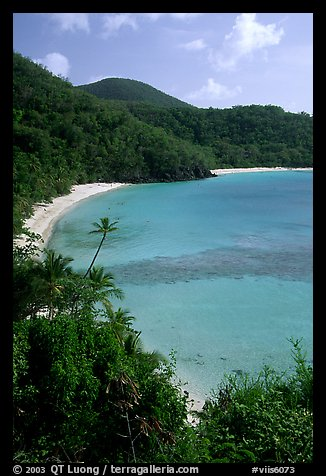 Tropical hills and beach, Hawksnest Bay. Virgin Islands National Park, US Virgin Islands.