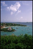 Cruz Bay harbor. Virgin Islands National Park, US Virgin Islands. (color)