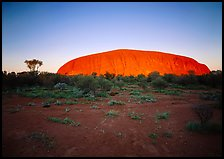 Sunrise, Ayers Rock. Uluru-Kata Tjuta National Park, Northern Territories, Australia (color)