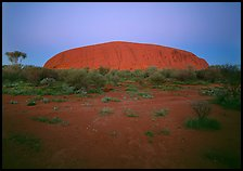 Ayers Rock at dawn. Uluru-Kata Tjuta National Park, Northern Territories, Australia (color)