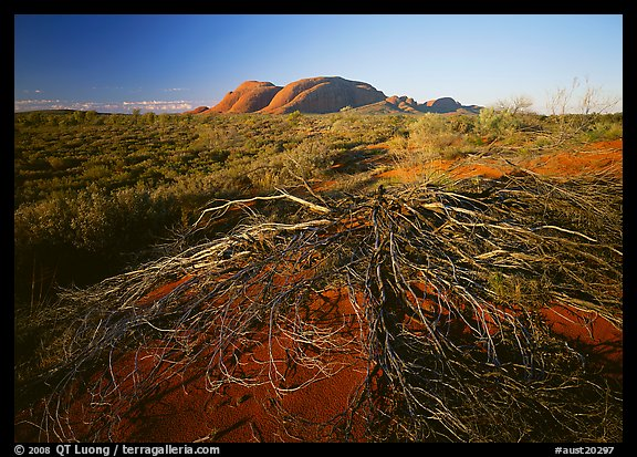 Olgas, late afternoon. Australia (color)