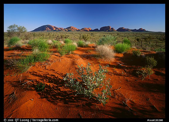 Pink sand dunes and Olgas. Australia (color)