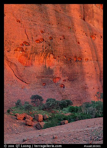 Rock wall, the Olgas. Australia (color)