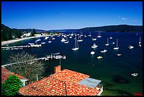 Yatchs anchored in the outskirts of the city. Sydney, New South Wales, Australia ( color)