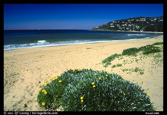 Beach north of the city. Sydney, New South Wales, Australia (color)