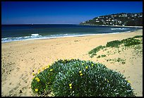 Beach north of the city. Sydney, New South Wales, Australia ( color)