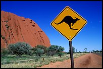 Kangaroo crossing sign near Ayers Rock. Australia (color)
