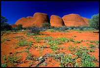 pictures of Uluru-Kata Tjuta National Park
