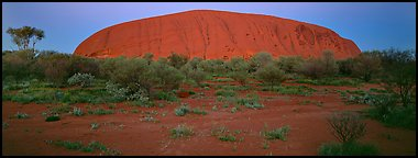 Ayers rock at twilight. Uluru-Kata Tjuta National Park, Northern Territories, Australia (Panoramic color)