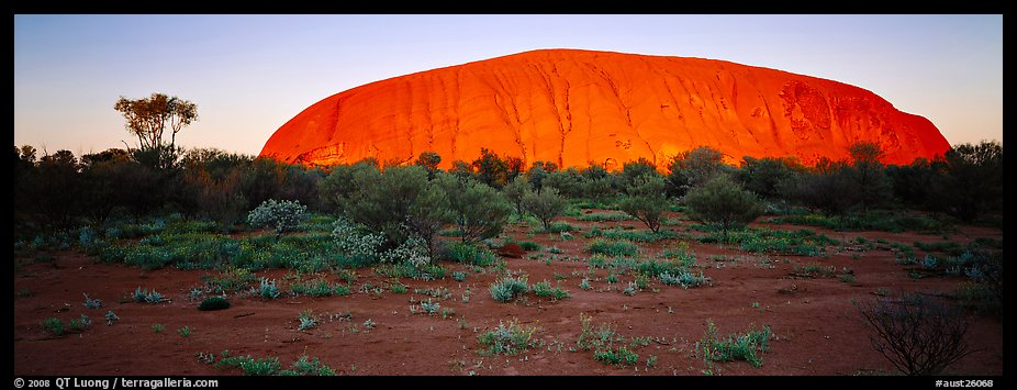 Ayers rock with sunrise glow. Uluru-Kata Tjuta National Park, Northern Territories, Australia