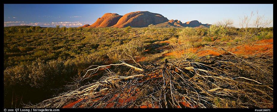 Australian Outback Wallpaper Australian Outback Olgas