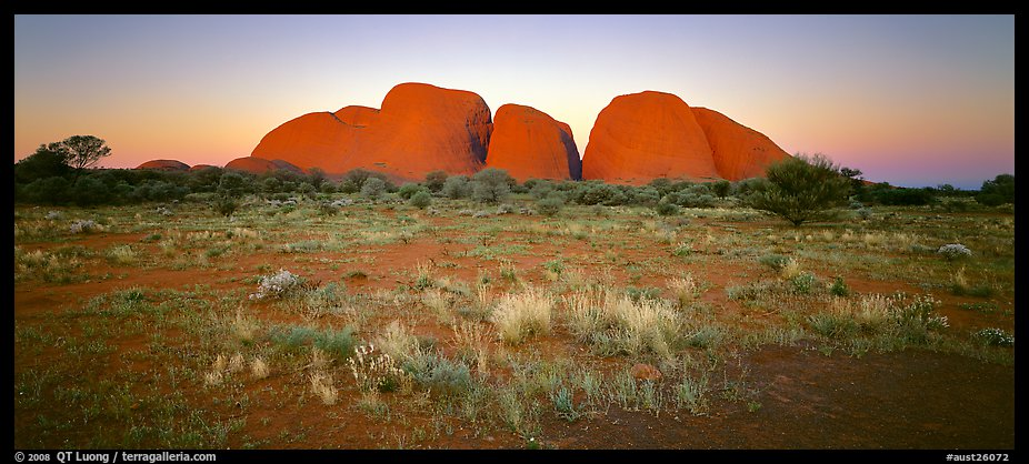 Olgas with sunset glow. Olgas, Uluru-Kata Tjuta National Park, Northern Territories, Australia