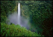 Akaka Falls. Akaka Falls State Park, Big Island, Hawaii, USA ( color)