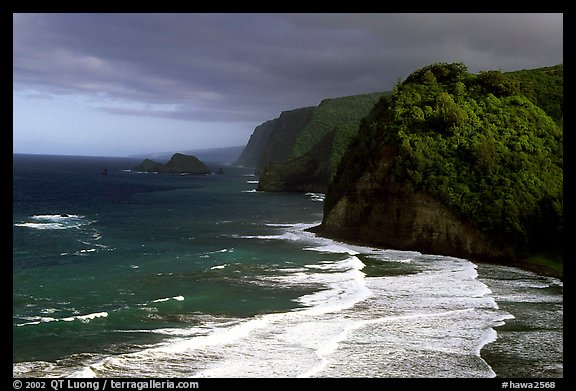 North shore coast from Polulu Valley overlook. Big Island, Hawaii, USA (color)