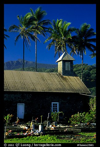 Church (1860) and palm trees, Keanae Peninsula. Maui, Hawaii, USA