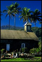 Church (1860) and palm trees, Keanae Peninsula. Maui, Hawaii, USA ( color)