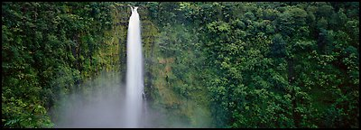 Tropical waterfall. Akaka Falls State Park, Big Island, Hawaii, USA (Panoramic color)
