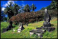 Japanese cemetery in Hana. Maui, Hawaii, USA ( color)