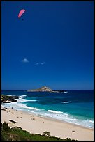 Makapuu Beach with paraglider above. Oahu island, Hawaii, USA