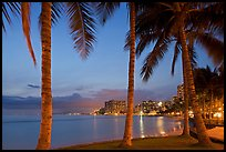 Palm trees and Waikiki beach at dusk. Waikiki, Honolulu, Oahu island, Hawaii, USA