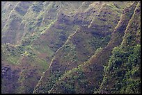 Steep ridges covered with tropical vegetation, Koolau Mountains. Oahu island, Hawaii, USA (color)
