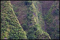 Steep ridges near Pali Highway, Koolau Mountains. Oahu island, Hawaii, USA (color)