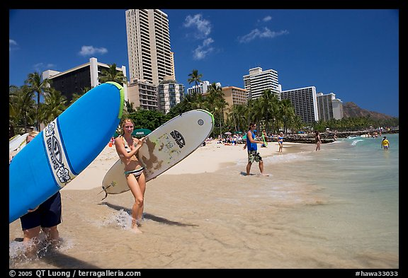 Women carrying surfboards into the water, Waikiki Beach. Waikiki, Honolulu, Oahu island, Hawaii, USA