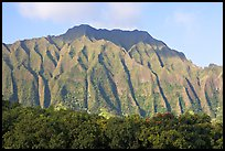 Fluted mountains, Koolau range, early morning. Oahu island, Hawaii, USA ( color)