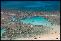People in the water in the reefs of Hanauma Bay. Oahu island, Hawaii, USA