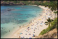 Hanauma Bay beach from above. Oahu island, Hawaii, USA (color)