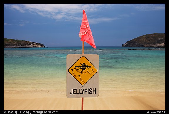 Sign warning against jellyfish,  Hanauma Bay. Oahu island, Hawaii, USA