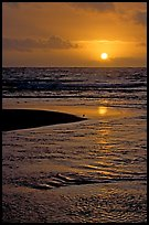 Sun and bird, mouth of the Wailua River. Kauai island, Hawaii, USA (color)