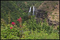 Opaekaa Falls and tropical vegetation, mid-morning. Kauai island, Hawaii, USA