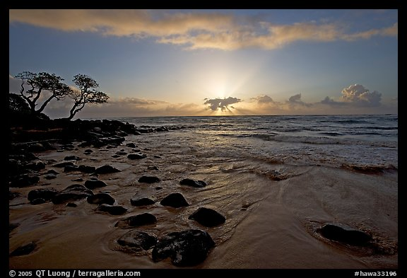 Windblown trees, boulders, and clouds, Lydgate Park, sunrise. Kauai island, Hawaii, USA