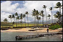 Pier, Kukuila harbor. Kauai island, Hawaii, USA