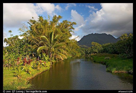 River near Hanalei. North shore, Kauai island, Hawaii, USA