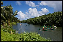 Kayaks, Hanalei River. Kauai island, Hawaii, USA (color)