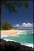 Beach, volcanic rock, and turquoise waters, and homes  near Haena. North shore, Kauai island, Hawaii, USA ( color)