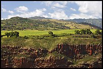 Cliff, field, and hills, Hanapepe overlook. Kauai island, Hawaii, USA (color)