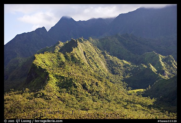 Aerial view of slopes of Mt Waialeale. Kauai island, Hawaii, USA (color)