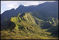 Aerial view of slopes of Mt Waialeale. Kauai island, Hawaii, USA