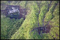 Aerial view of a crater on the slopes of Mt Waialeale. Kauai island, Hawaii, USA (color)