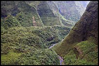 Aerial view of a valley on the slopes of Mt Waialeale. Kauai island, Hawaii, USA