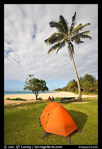 Tent and palm trees, Haena beach park. North shore, Kauai island, Hawaii, USA (color)