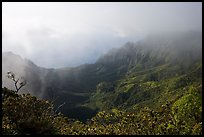Kalalau Valley and mist, late afternoon. Kauai island, Hawaii, USA